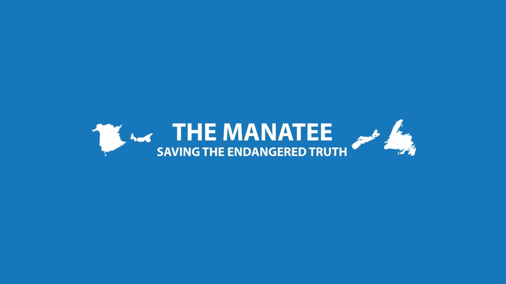 Manatee youtube banner PNG
