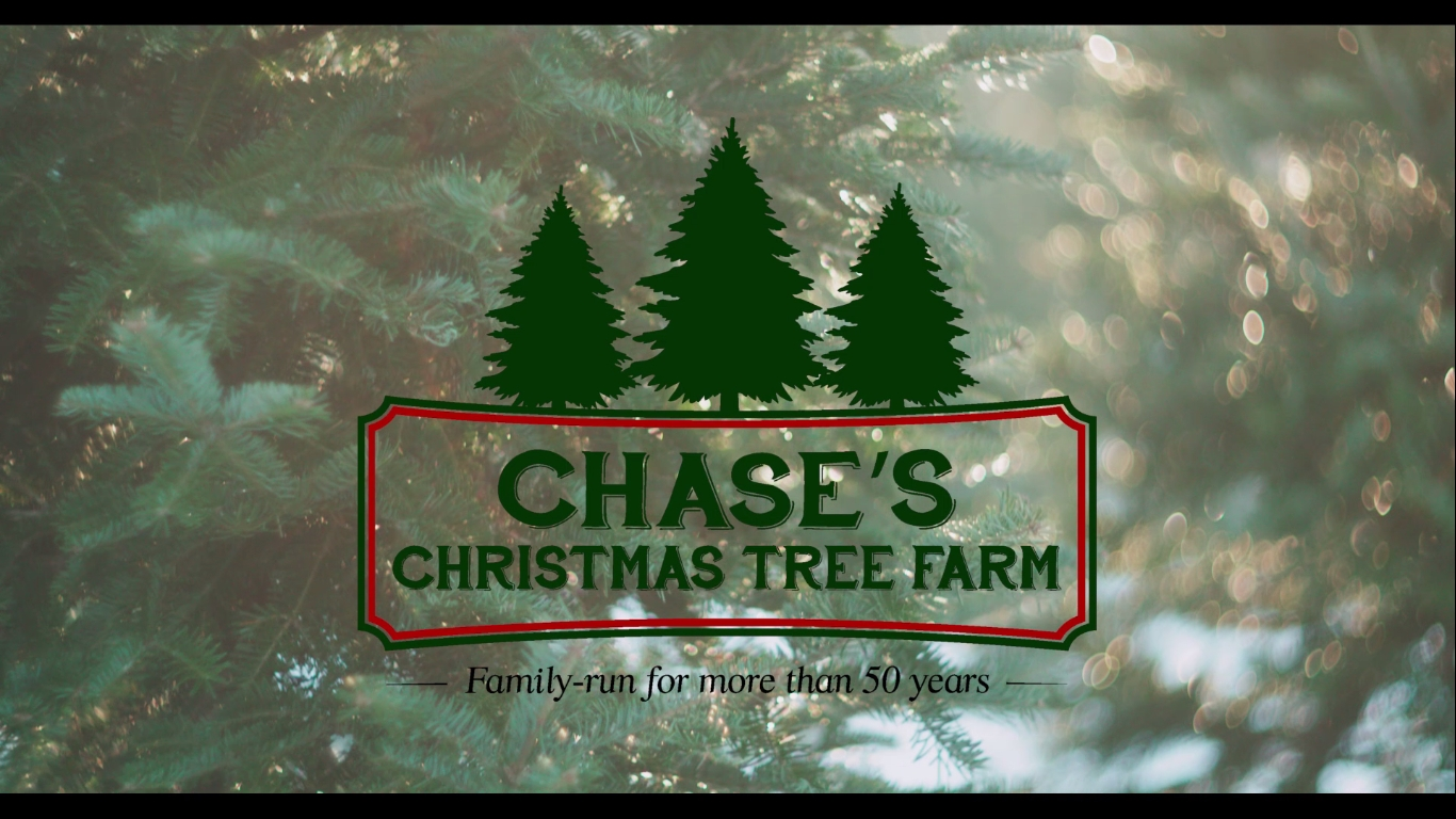 Chase Christmas Eve Hours.Profile Video For Chase S Christmas Tree Farm Fredericton